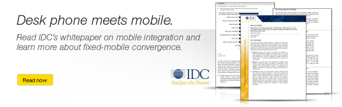 Mobile Integration Whitepaper Banner